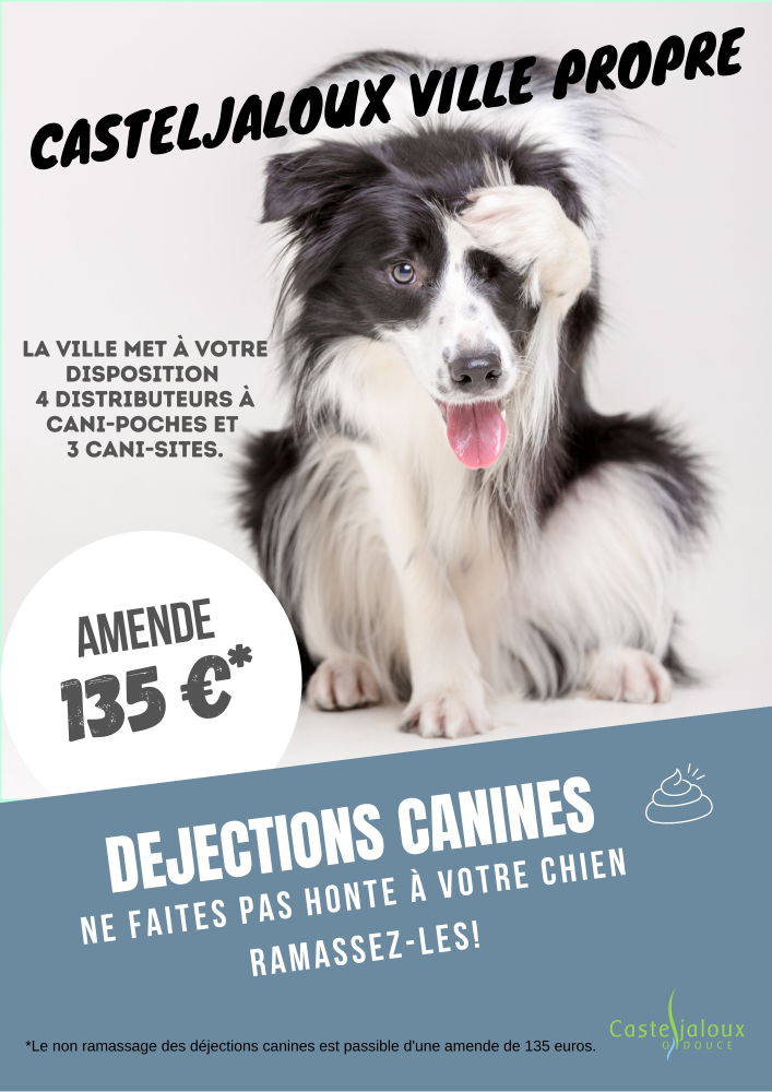 Affiches-dejections-canines